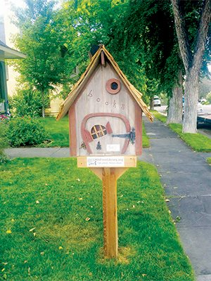 Local book drive to grow little libraries